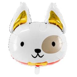 Folieballong, hund