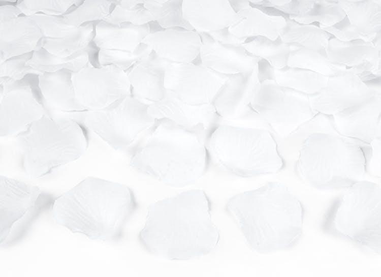 vita rosenblad