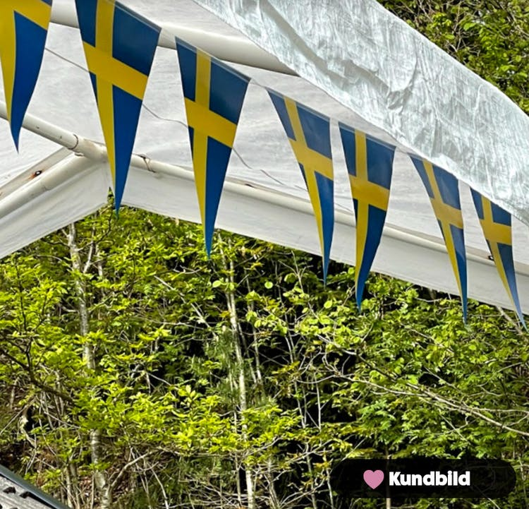 Flaggvimpel, triangel, Sverige