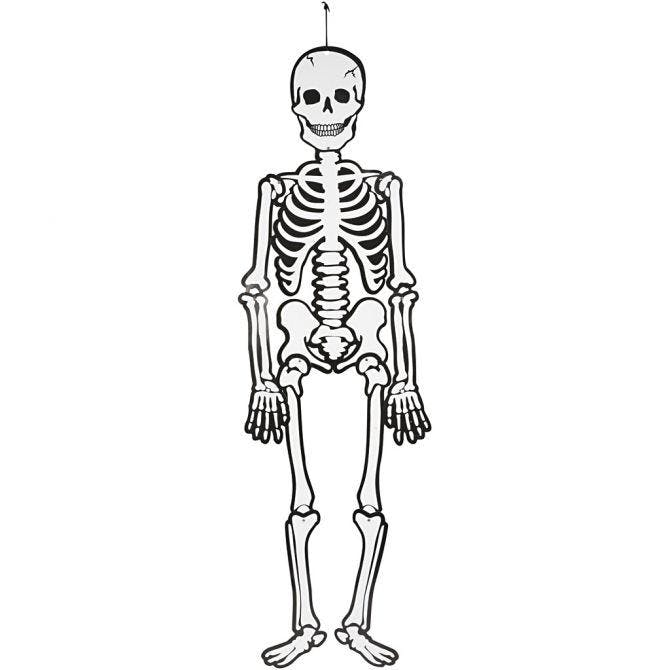 Skelett Halloween