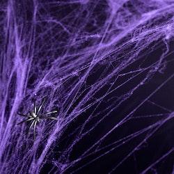 Spindelnät, Halloween, Lila