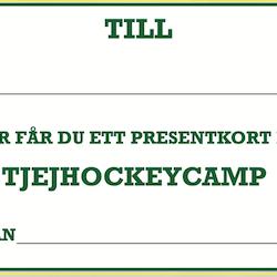 Presentkort tjejhockeycamp