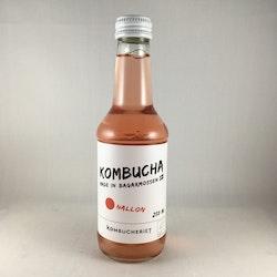 Kombucheriet - Hallon Kombucha