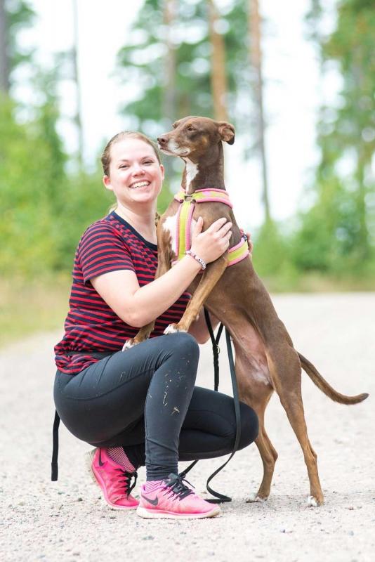 BFF Strays om hundar, adoptioner och vegofoder