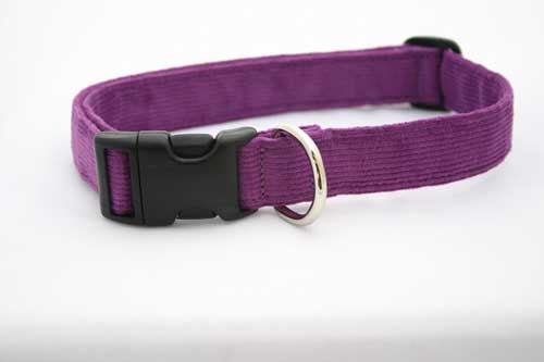 Good Dog Company / Corduroy / Plum / Halsband XL