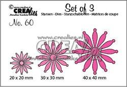 Crealies Set of 3 no. 60 solid Flowers 25