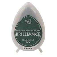 Brilliance Dew Drop Ivy