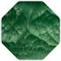 Crackle Mousse - Chameleon Green