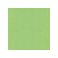 10 pack Cardstock Linen - Spring Green