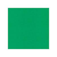 10 pack Cardstock Linen - Green