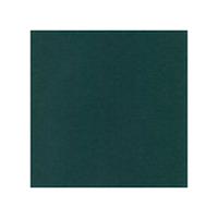 10 pack Cardstock Linen - Jade