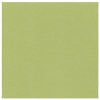 10 pack Cardstock Linen - Avocado green