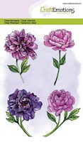 CraftEmotions clearstamps A6 - peony 4 flowers