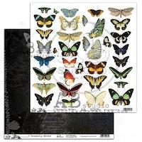 A.B Studio klippark 12x12 - Butterfly Effect