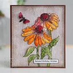 """Woodware Clearstamp """"Echinacea and Moth"""""""