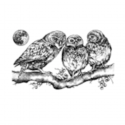 Crafty Individuals - Owl Family