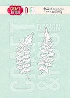Craft & You Die - Mini Ferns