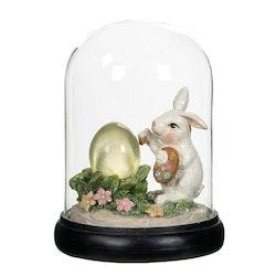 Ledkupa Hare/Ägg