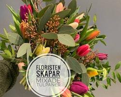 Floristens val - Mix tulpaner