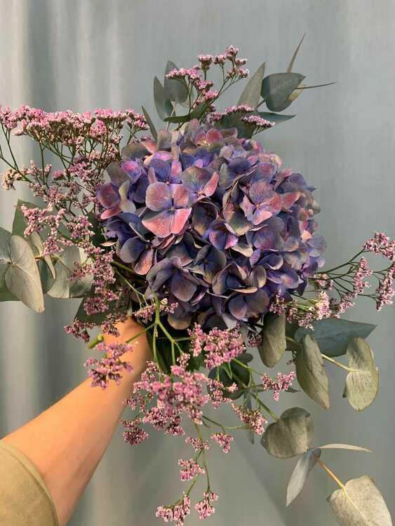 Härlig Hortensia bukett - Blå/lila