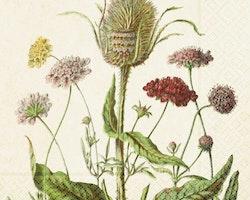 Servett - Blomsteräng