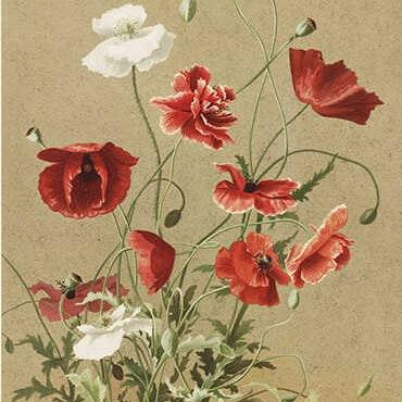Dubbel kort med kuvert - Motiv 2 - 8,5x11,5cm