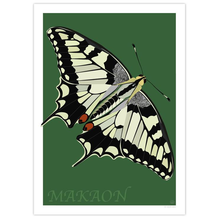 Poster Makaonfjäril utan ram