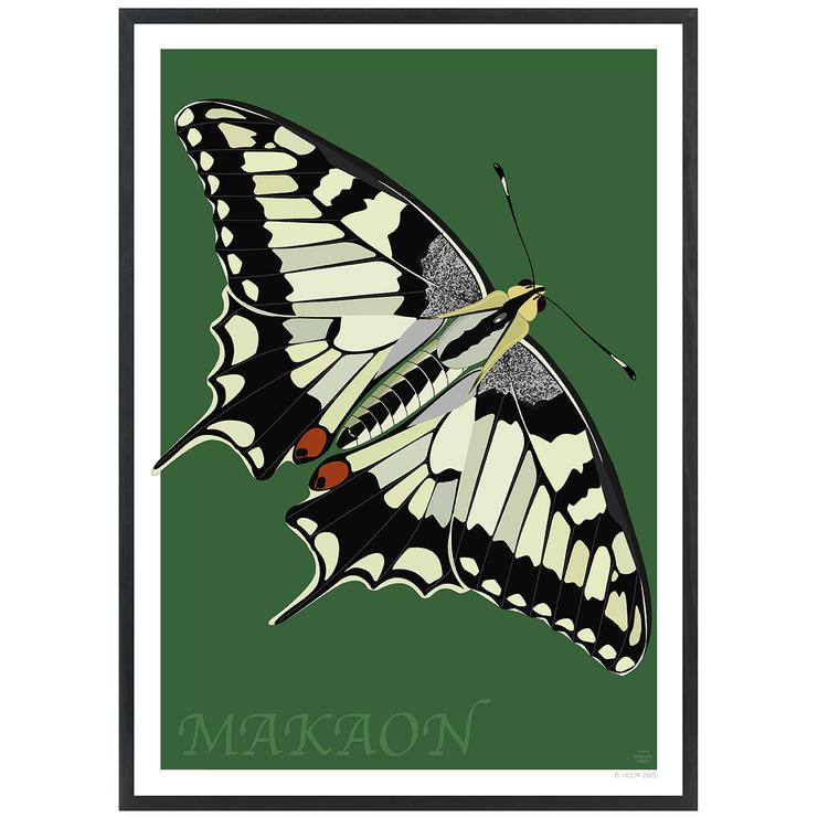 Poster Makaonfjäril med svart ram