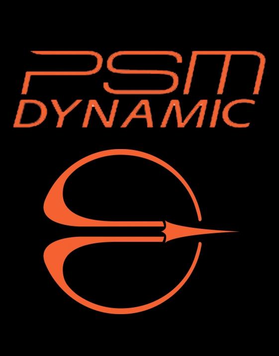 PSM DYNAMIC - CTM Performance