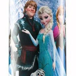 Ståltermos 0,5 ltr, Frozen - Disney