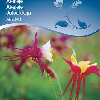 Akleja-pastell