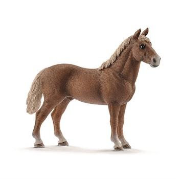 Schleich, Morgan häst hingst