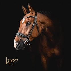 Lippo Dressyrträns Supreme Integro