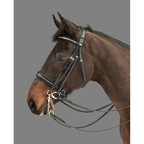 Mountain Horse Träns Rubicon Multi Bridle Svart
