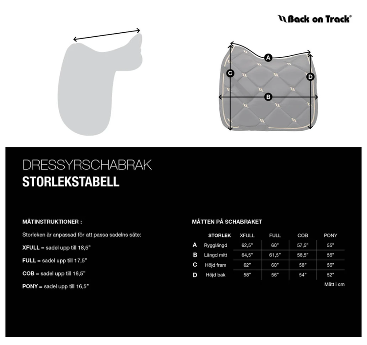 Back On Track Nights Collection Schabrak - Champagne