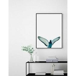 Estancia Poster Birdie