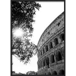 Estancia Poster When in Rome