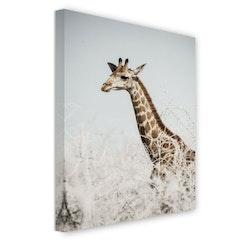 Estancia Tavla Canvas Giraffe