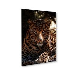 Estancia Tavla Canvas Leopard