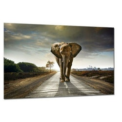 Estancia Tavla Canvas Elephant