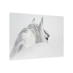 Estancia Tavla Canvas Horse White