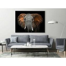 Estancia Tavla Canvas Red Elephant
