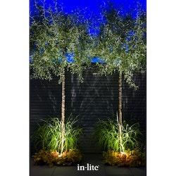 In-Lite Utomhusbelysning Trädpaket