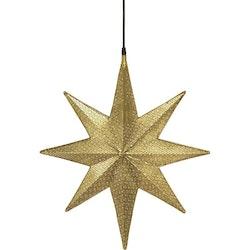 PR Home Julstjärna Capella Guld