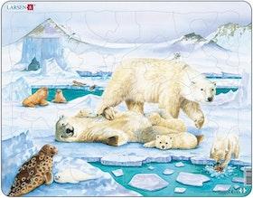 Isbjörnar - Larsen