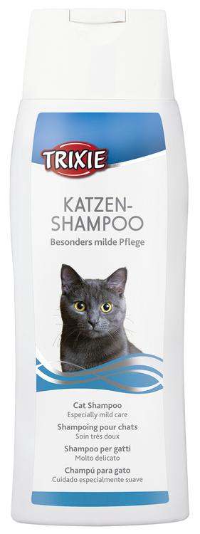 Kattschampo