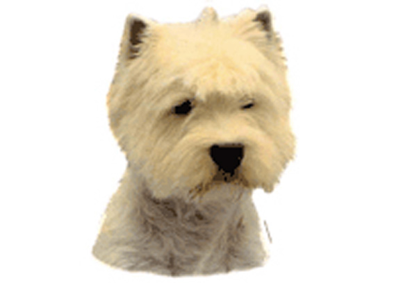 West Highland Wh. Terrier
