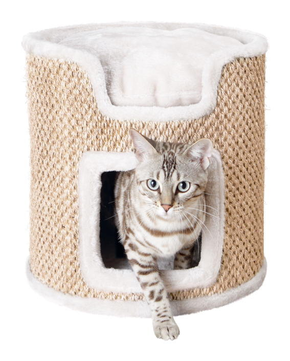 Ria Cat Tower