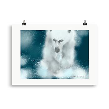 Isbjørn 1