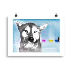 Huskey-kjærleik